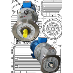 WEM Geared Motors